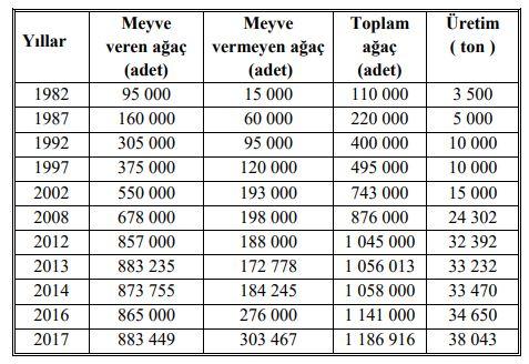 Trabzon hurması, cennet hurması, hurma ağacı gübresi