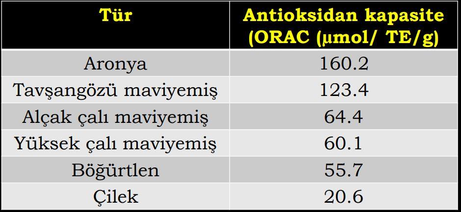 Değişik meyve türlerinde antioksidan kapasite
